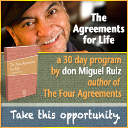 don Miguel Ruiz New Agreements for Life Web Banners