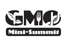 GMO Summit Logo