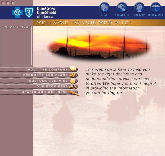 Blue Cross Blue Shield Web Site Concepts