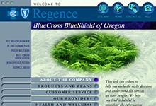 Blue Cross Blue Shield Site
