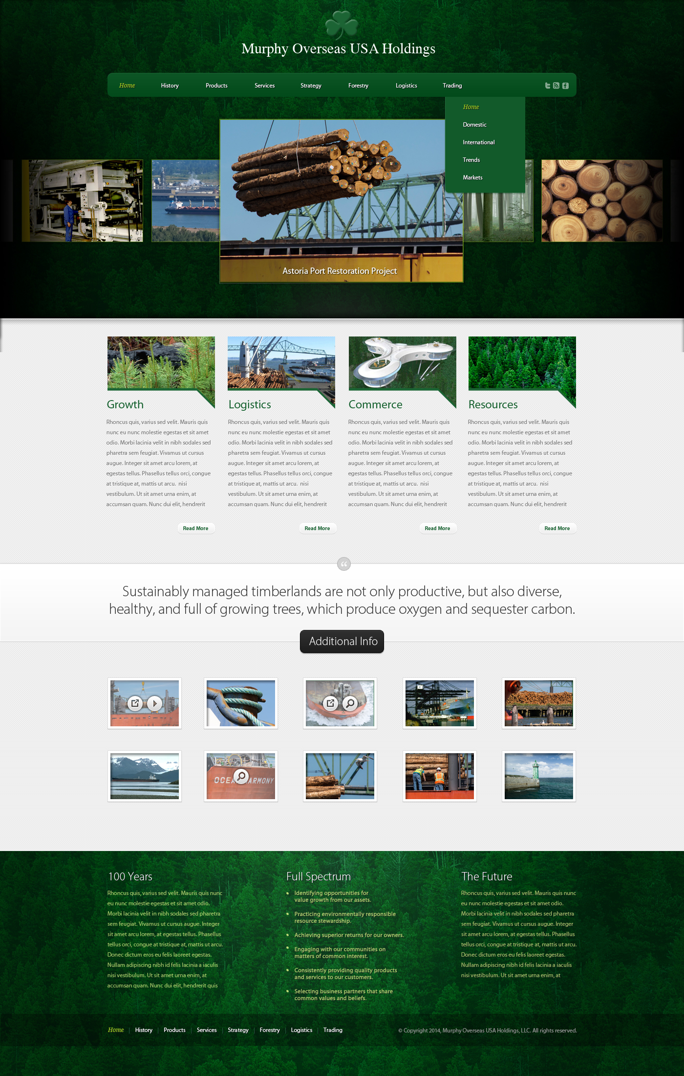 Murphy Holdings Web Site Design