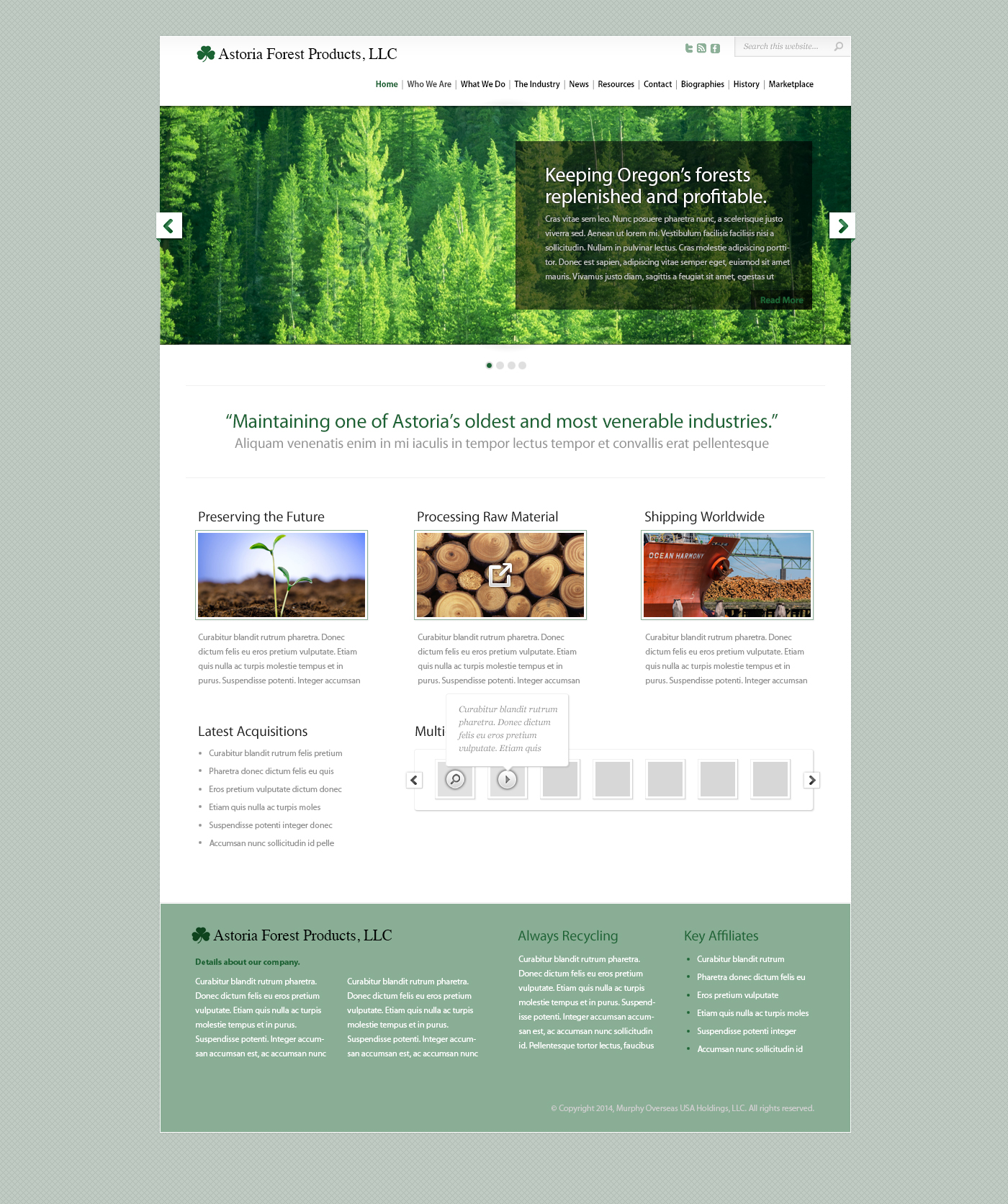 Astoria Forest Products Web Site